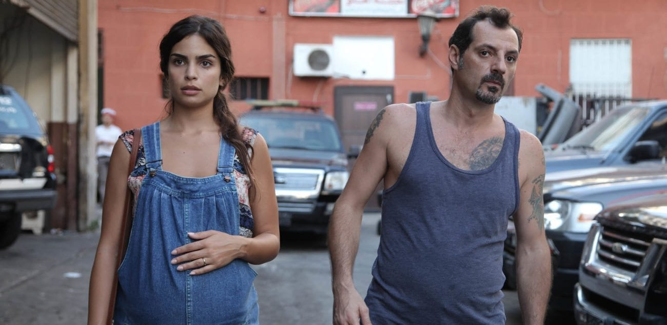 'The Insult' tells, following a trivial incident, the violent dispute between a Christian from Lebanese origin and a Palestinian Muslim. Thus began a long trial in which Palestinians and Lebanese Christians compete to a national level.