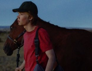 'Lean on Pete' is a story about love, loneliness, family, and friendship, told through the unique prism of one boy's connection to a very special racehorse.