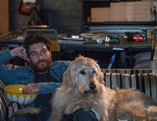 Directed by Ken Marino, 'Dog Days' is a hilarious and heartfelt ensemble comedy that follows the lives of multiple dog owners and their beloved fluffy pals around sunny Los Angeles.