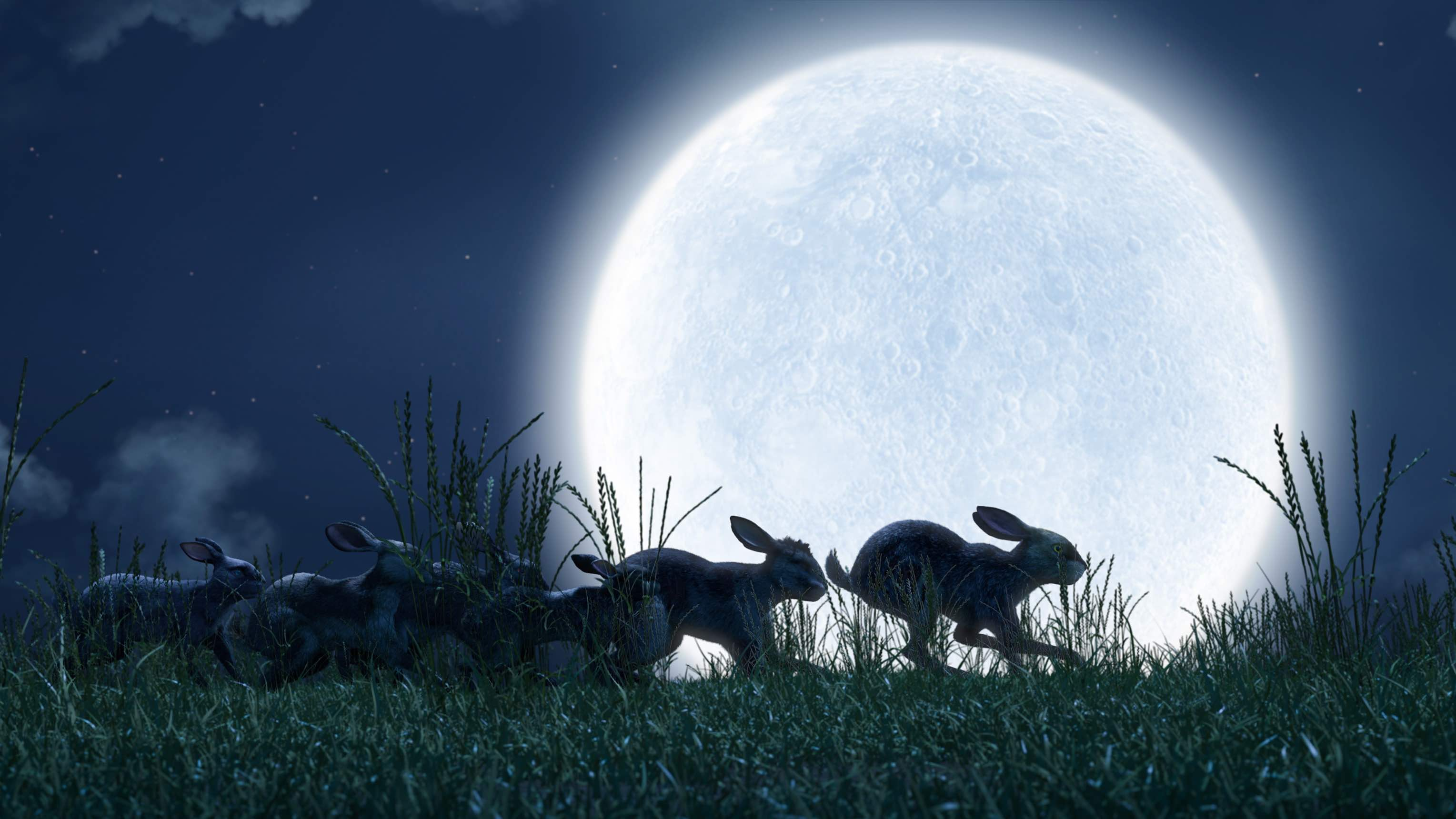 Based on Richard Adams's classic allegorical novel, Watership Down tells the tale of a group of anthropomorphized rabbits who escape the destruction of their warren.