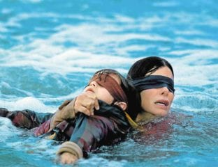 The Sandra Bullock Netflix vehicle 'Bird Box' has inspired a challenge that makes it clear some people on the internet just can't wait to hurt themselves.