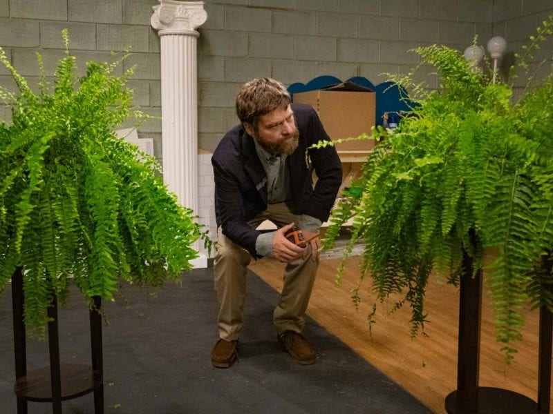 Stupendously uncomfortable – and hilarious – episodes of 'Between Two Ferns'have dropped since it started in 2008. Here's our ranking of the eight best.
