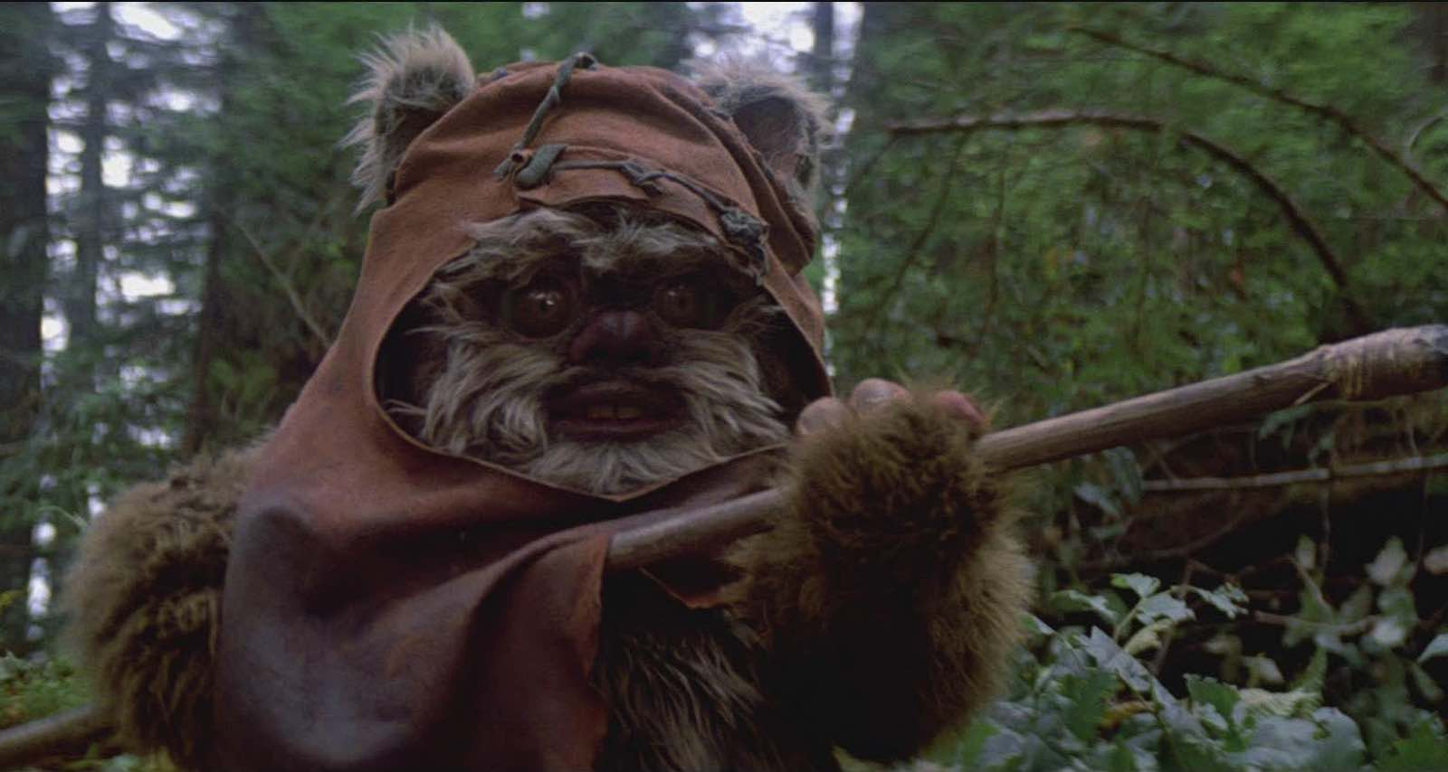 Ewok Star Wars