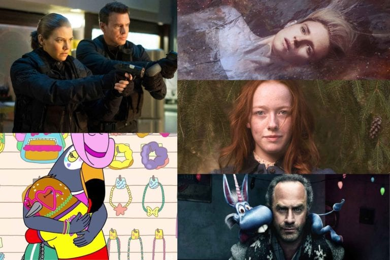 That's right, reader. It's time for fans to decide on the very Best Cancelled TV Show of 2019 in our Bingewatch Awards.
