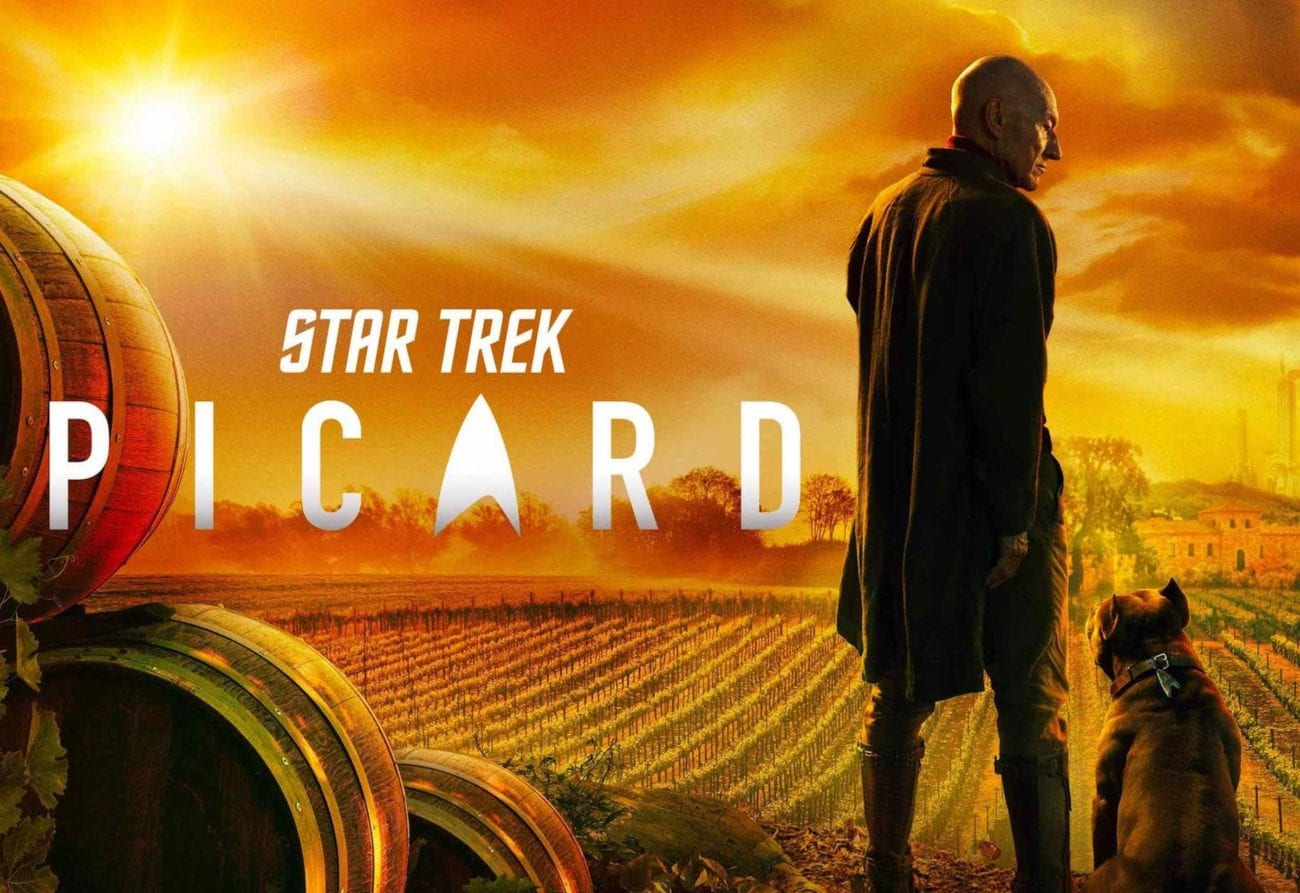 What could he have been doing in between the 20 years of 'Star Trek: Nemesis' and 'Star Trek: Picard'? Here's what we know.