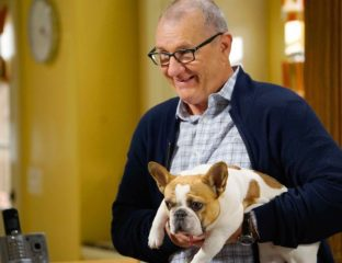 'Modern Family''s Stella the dog has passed on. The cast mourns the death of Beatrice, as do we. Let's celebrate Stella's best moments.