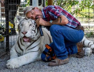 Joe Exotic is just a walking meme. 'The Tiger King: Murder, Mayhem, and Madness' is Netflix's latest true crime docuseries and here's the best memes.