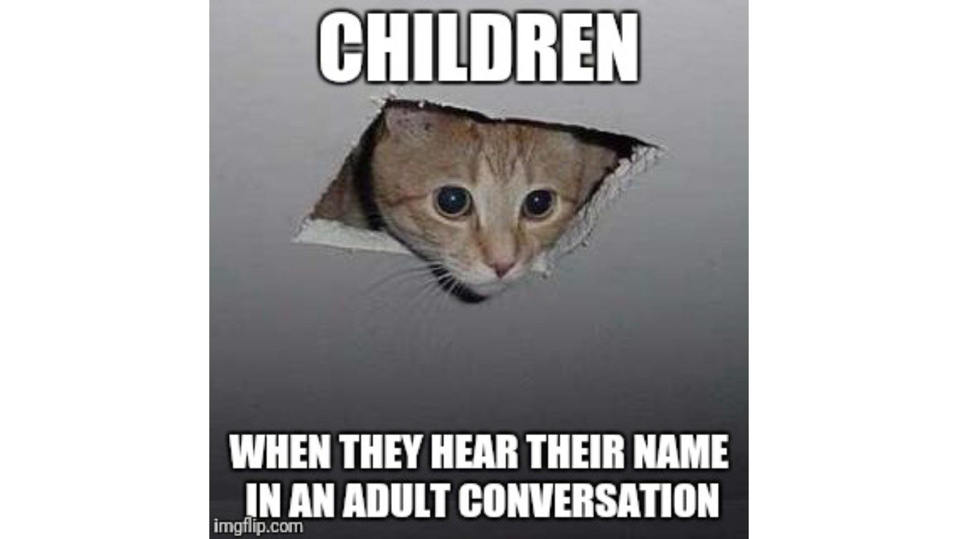 Check out these funny cat memes to help you through quarantine